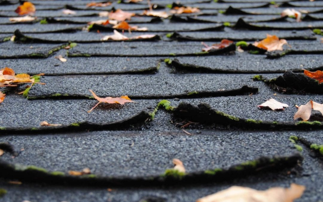it is time for a roof replacement when you notice curling shingles