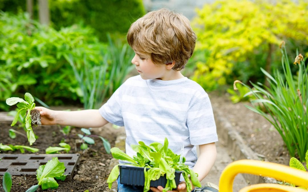 Gardening with Kids: 4 Things to Know