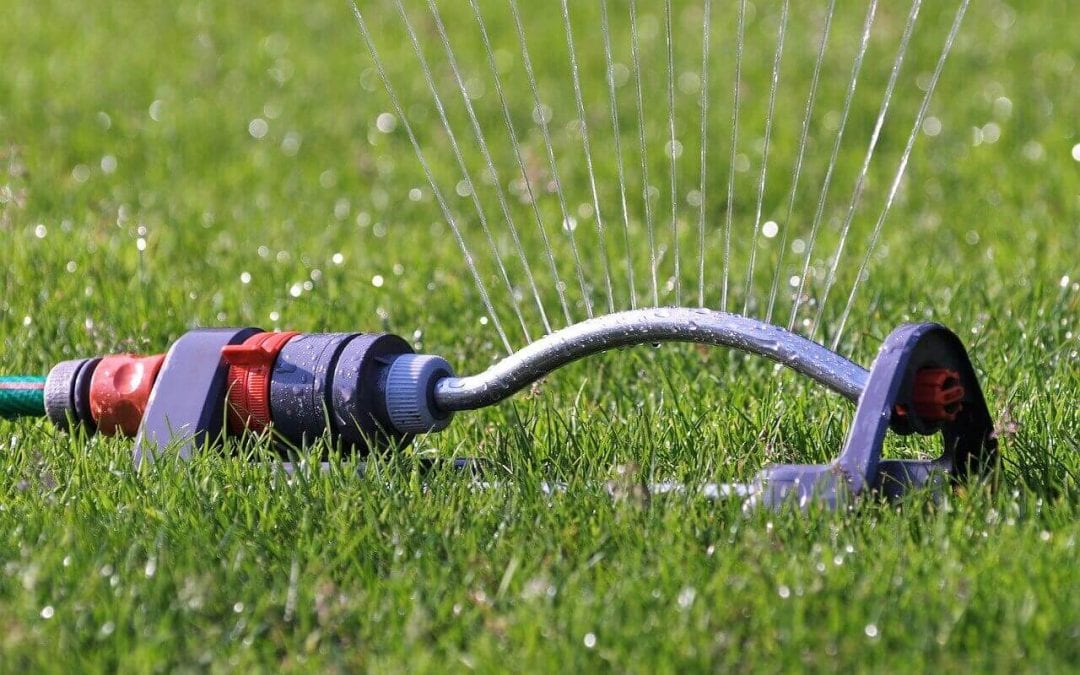 save water at home by only using sprinklers to water the grass